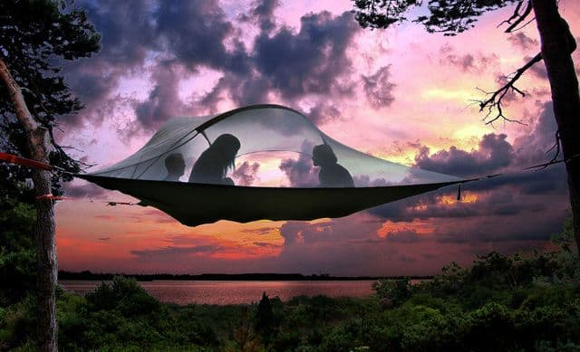 Tentsile - The Tree Tent | Blue Mountain Belle