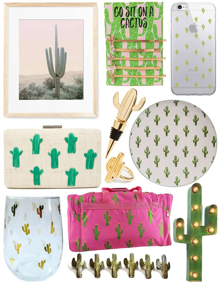Gifts for the cactus lovers