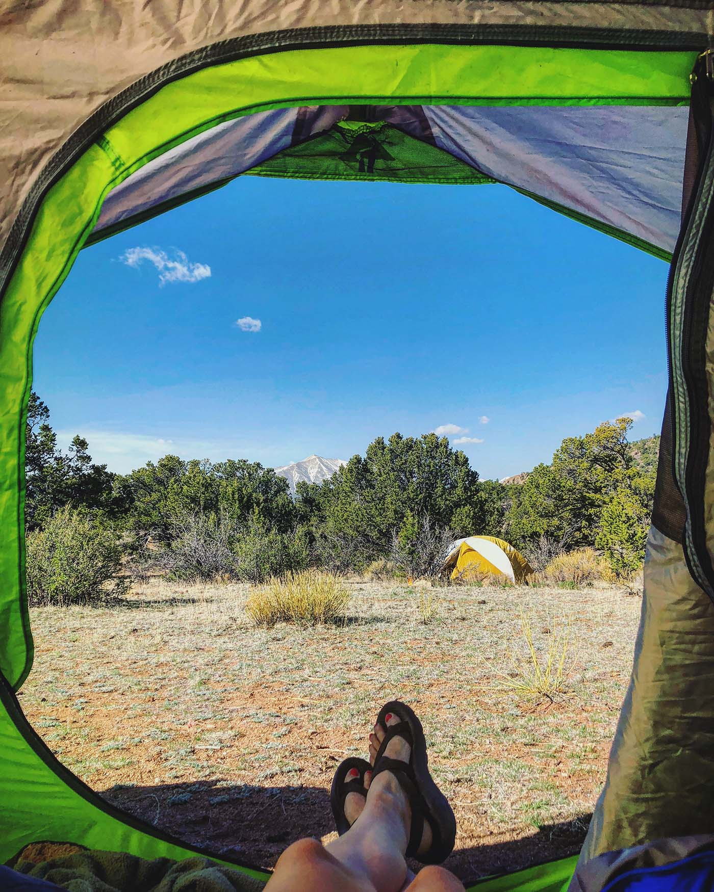 Car Camping Essentials for Camping in