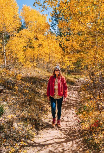 Fall Stroll At Golden Gate Canyon Park, Colorado
