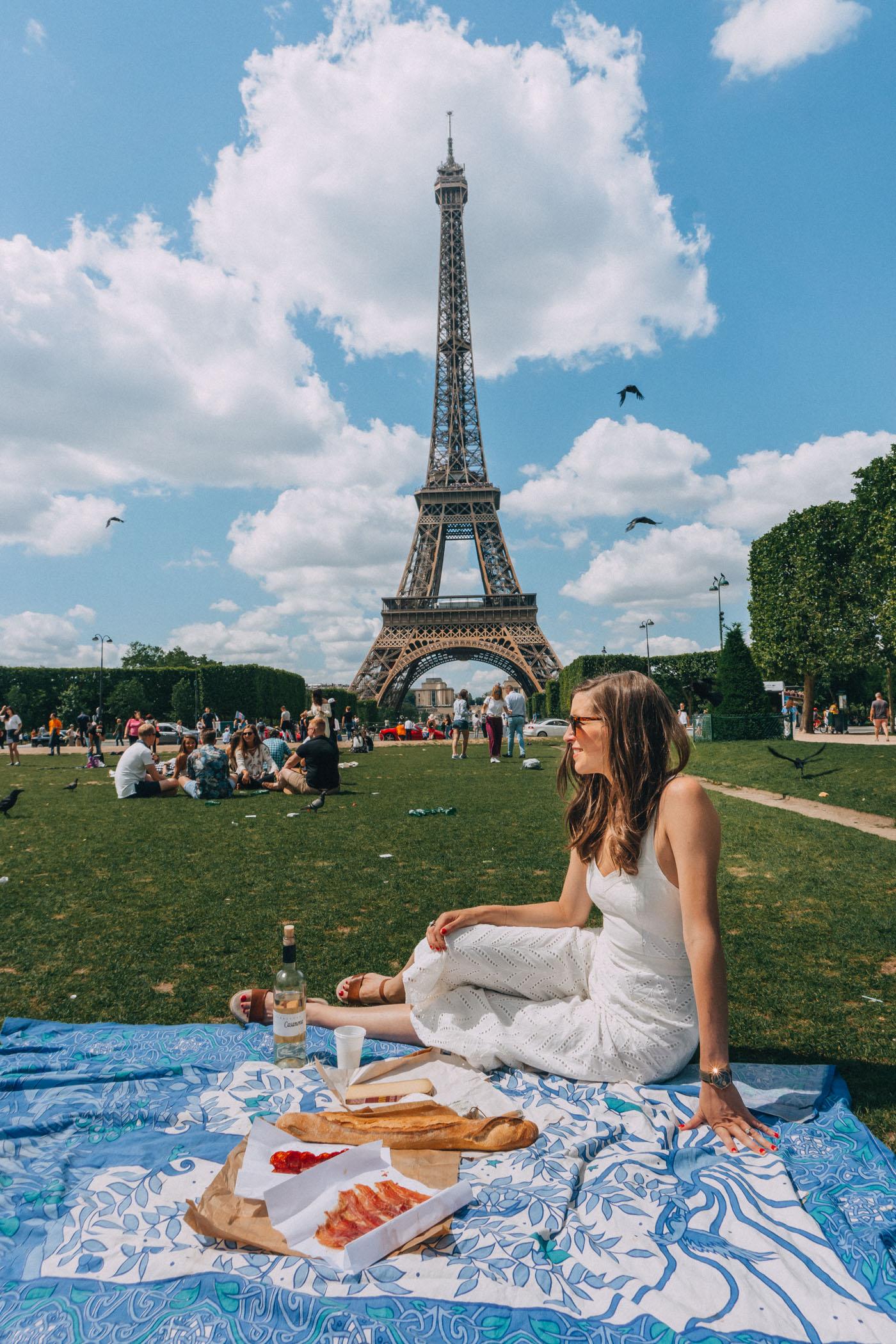 Picnic in Paris under the Eiffel Tower